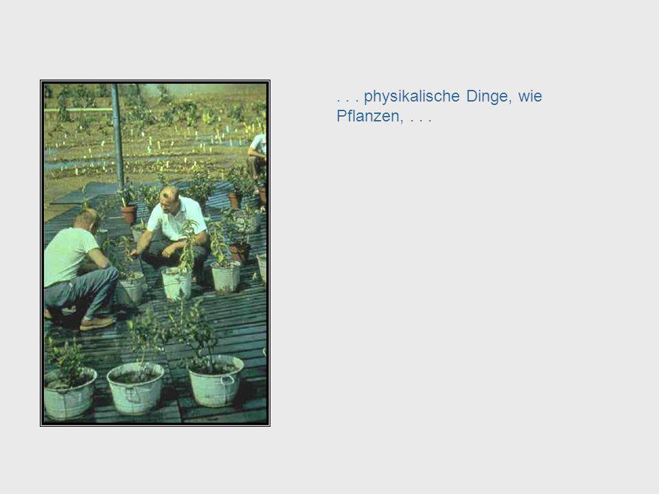 . . . physikalische Dinge, wie Pflanzen, . . .