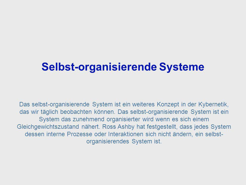 Self Organizing Systems