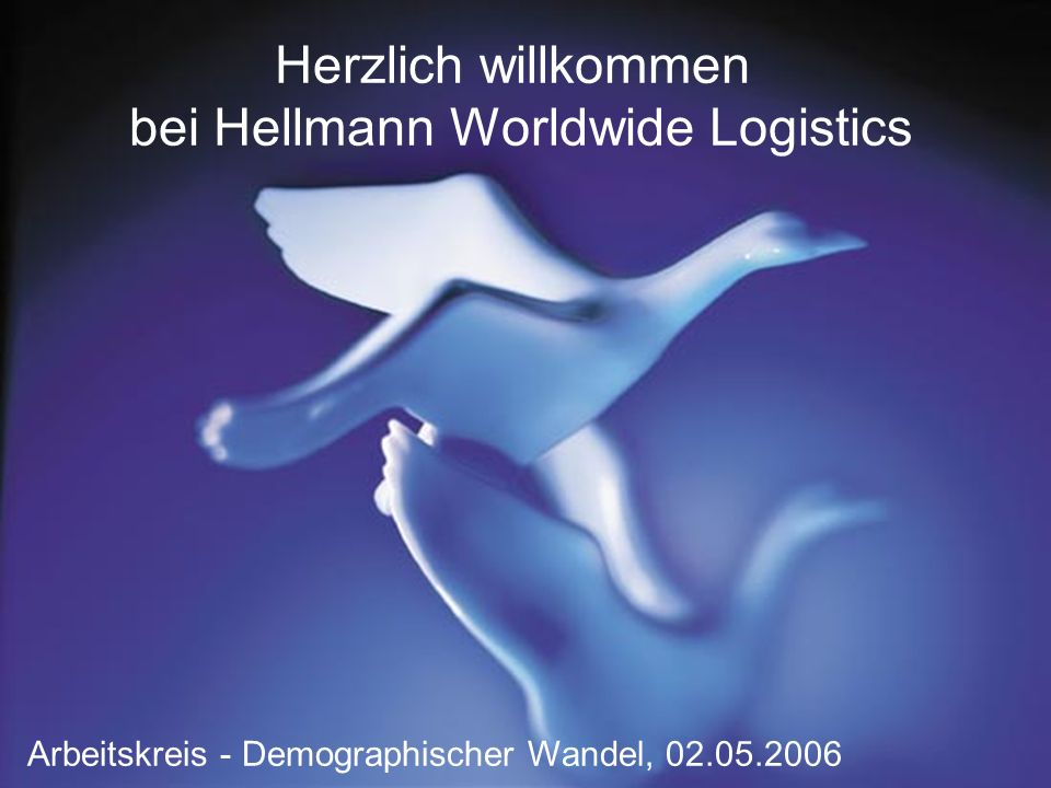 bei Hellmann Worldwide Logistics
