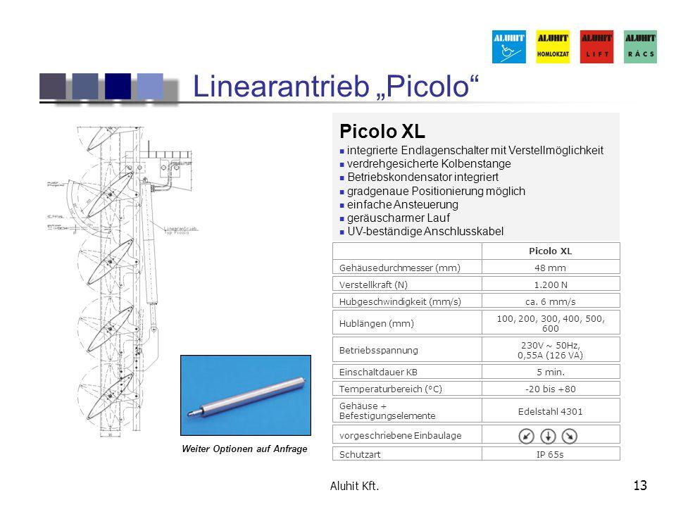 """Linearantrieb """"Picolo"""