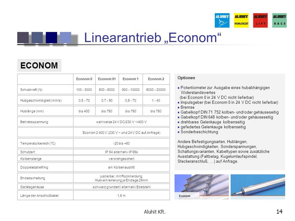"Linearantrieb ""Econom"