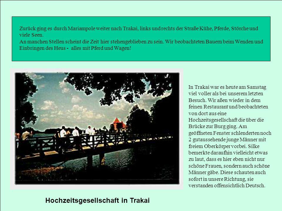 Hochzeitsgesellschaft in Trakai