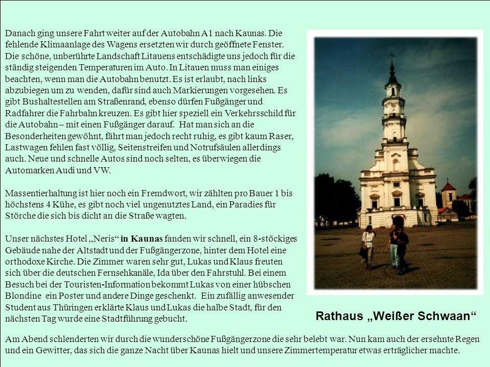 """Rathaus """"Weißer Schwaan"""