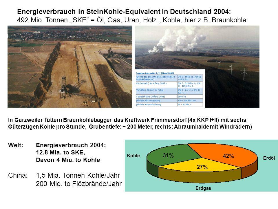 Energieverbrauch in SteinKohle-Equivalent in Deutschland 2004: