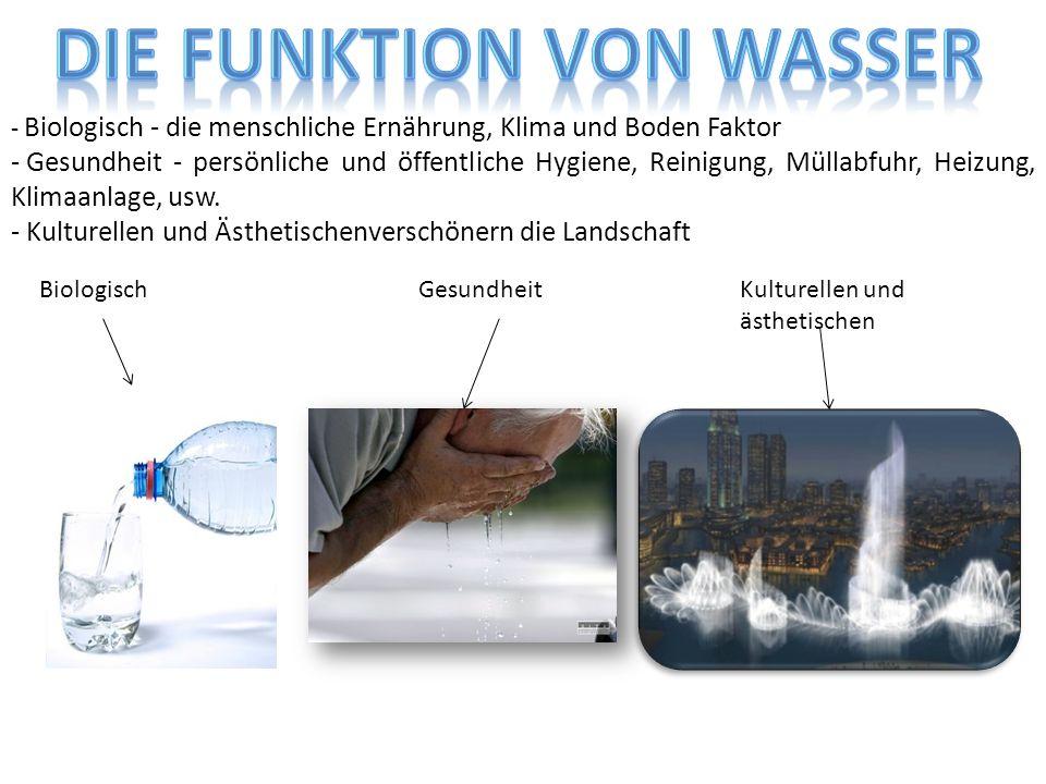 die Funktion von Wasser