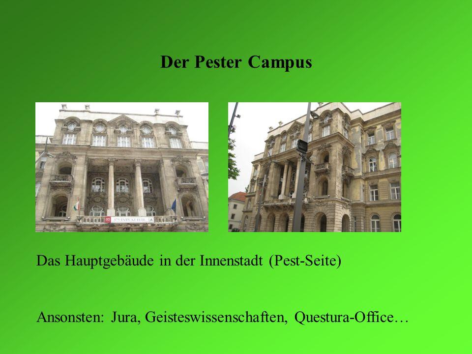 Der Pester Campus Das Hauptgebäude in der Innenstadt (Pest-Seite)