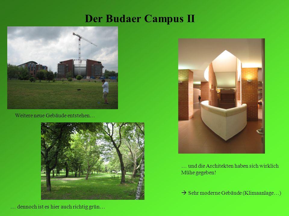 Der Budaer Campus II Weitere neue Gebäude entstehen…