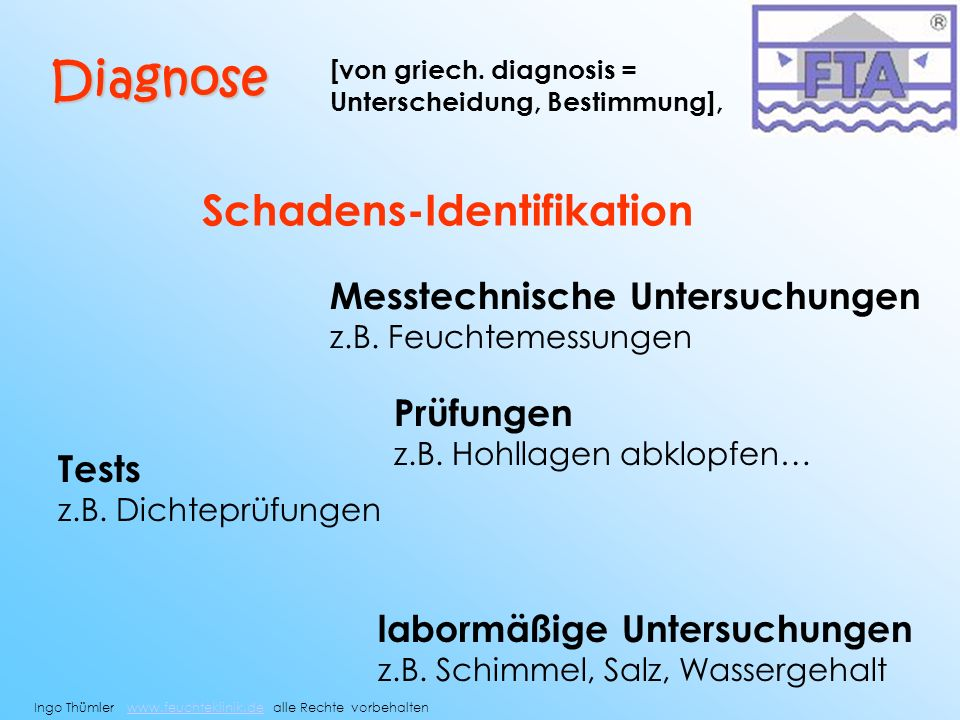 Diagnose Schadens-Identifikation Messtechnische Untersuchungen