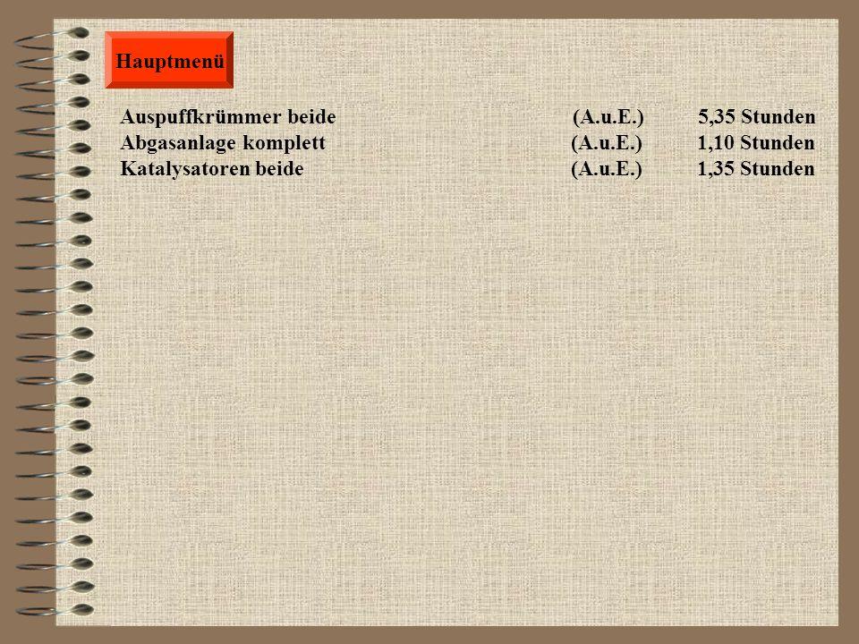 Hauptmenü Auspuffkrümmer beide (A.u.E.) 5,35 Stunden.