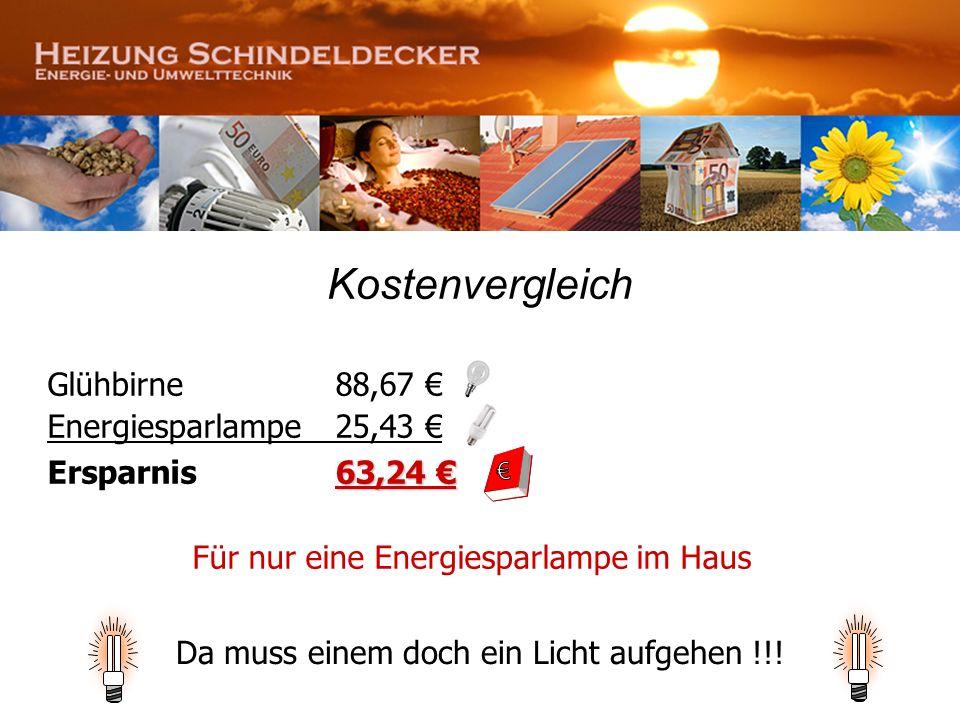 € Kostenvergleich Glühbirne 88,67 € Energiesparlampe 25,43 €