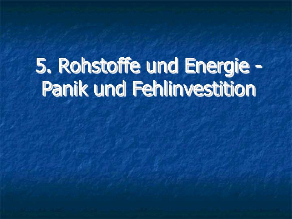 5. Rohstoffe und Energie - Panik und Fehlinvestition