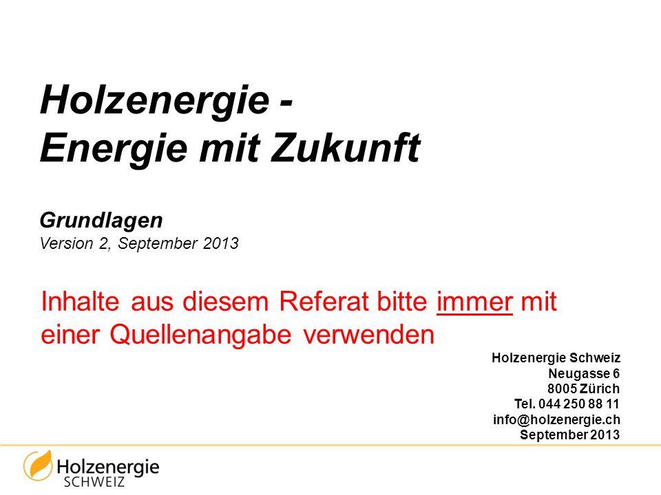 Holzenergie - Energie mit Zukunft