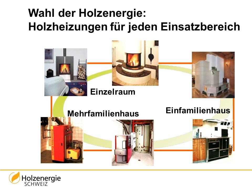 Wahl der Holzenergie: Holzheizungen für jeden Einsatzbereich