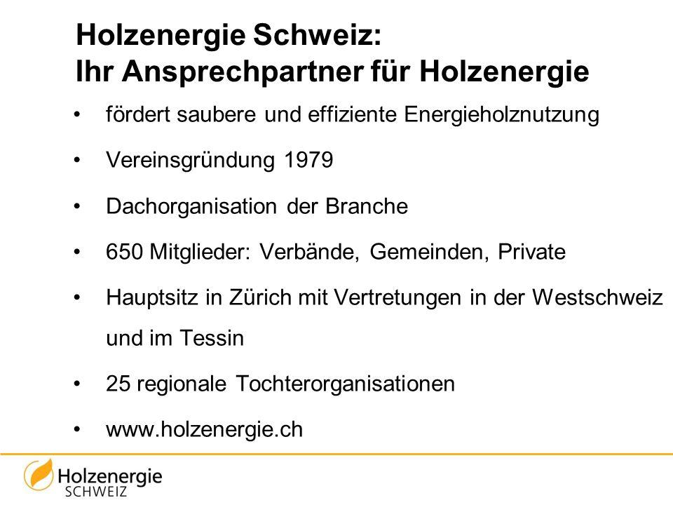 Holzenergie Schweiz: Ihr Ansprechpartner für Holzenergie