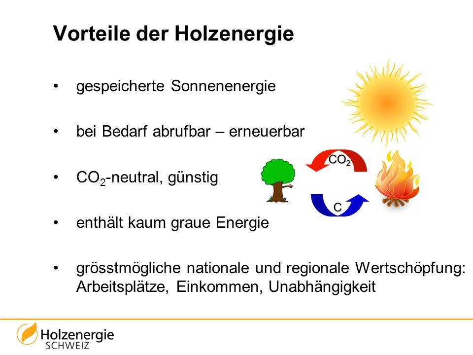 Vorteile der Holzenergie