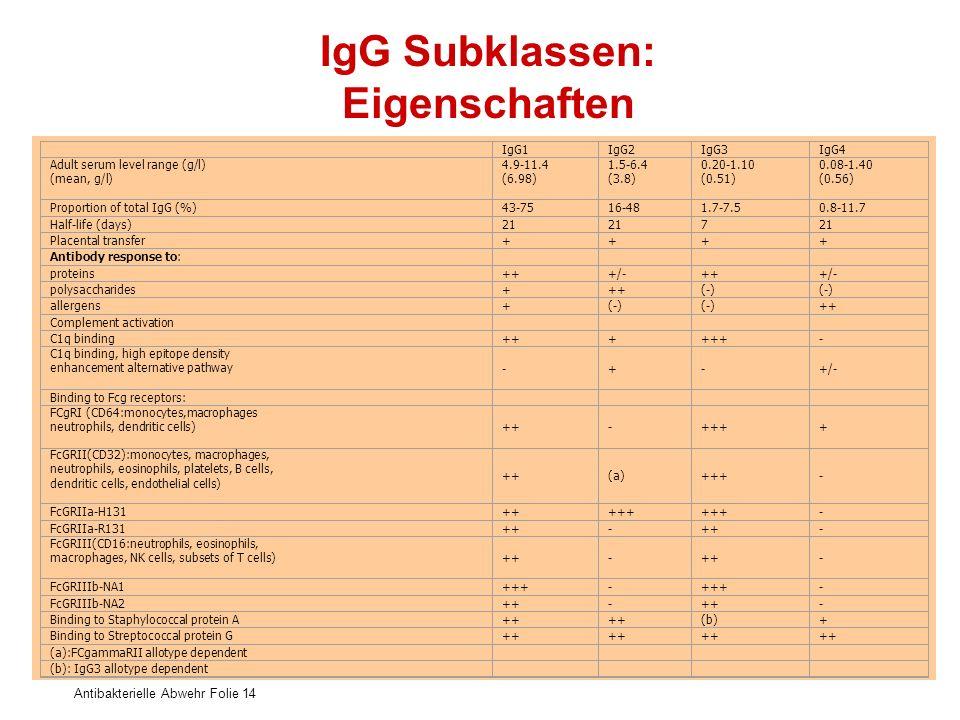 IgG Subklassen: Eigenschaften