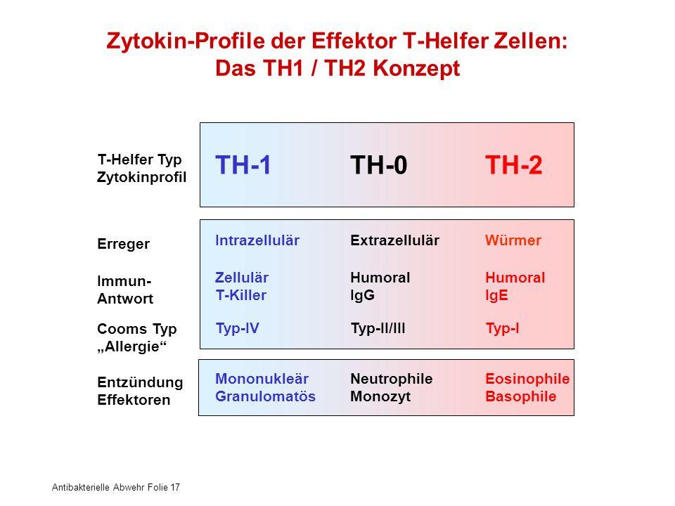 Zytokin-Profile der Effektor T-Helfer Zellen: Das TH1 / TH2 Konzept