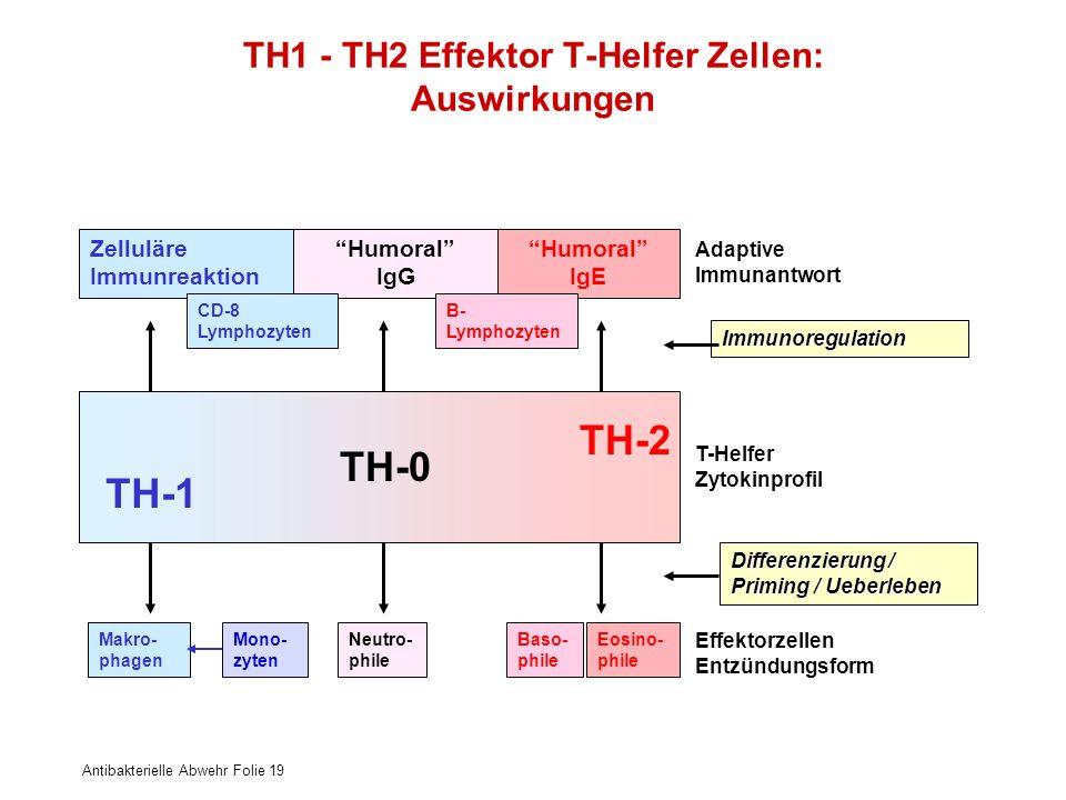 TH1 - TH2 Effektor T-Helfer Zellen: Auswirkungen
