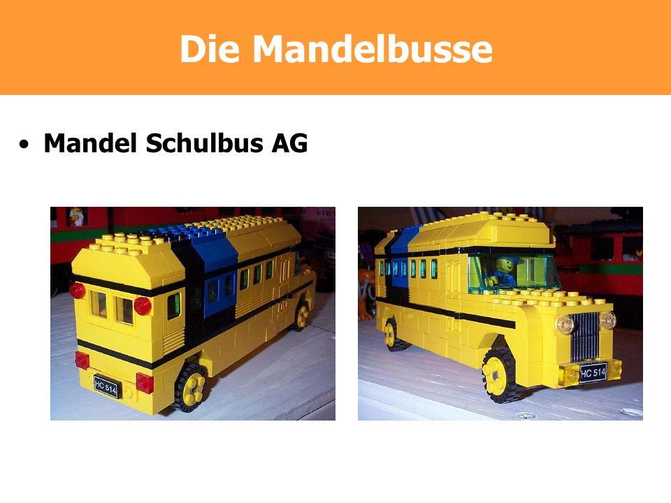 Die Mandelbusse Mandel Schulbus AG