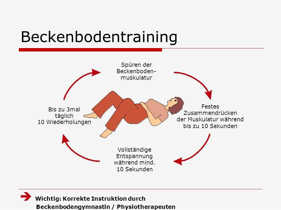 Groß Beckenboden Anatomie Ppt Fotos - Anatomie Ideen - finotti.info