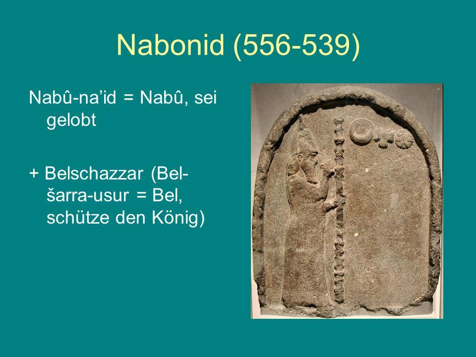 Nabonid (556-539) Nabû-na'id = Nabû, sei gelobt