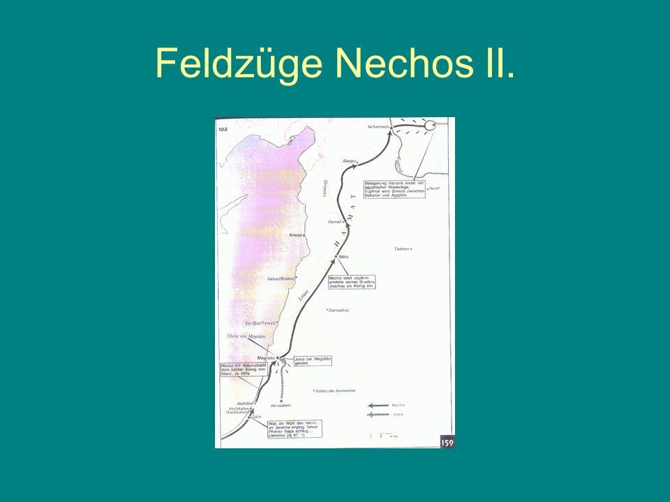 Feldzüge Nechos II.