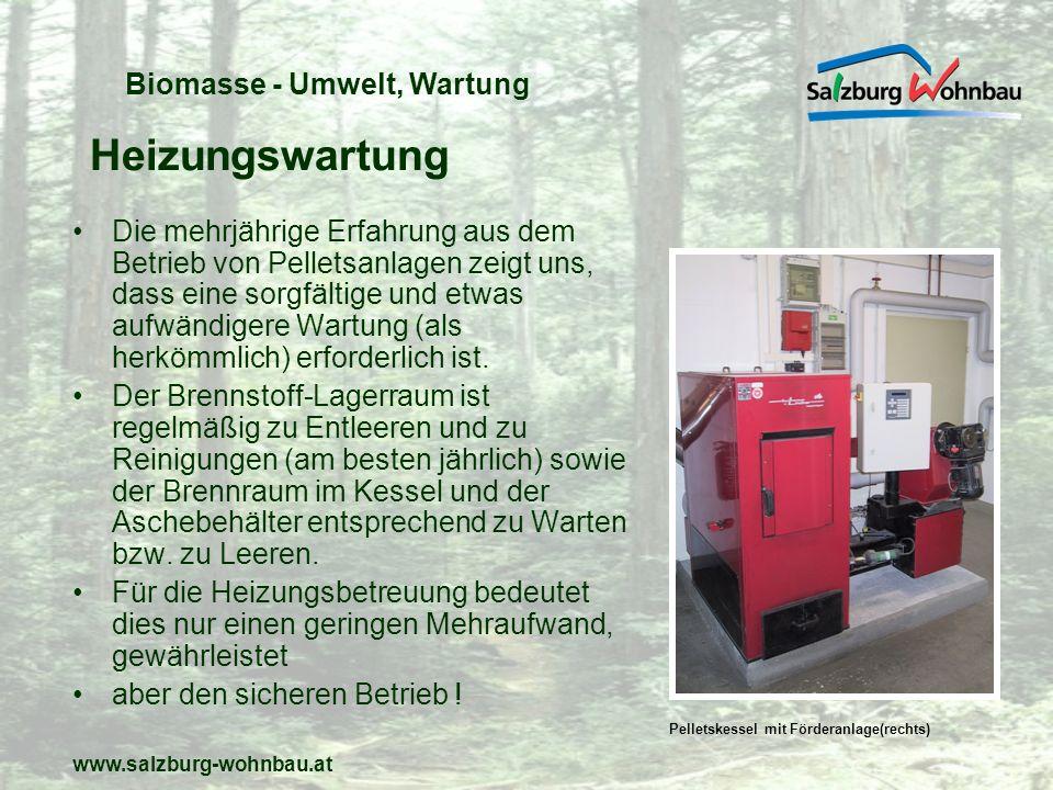 Heizungswartung Biomasse - Umwelt, Wartung