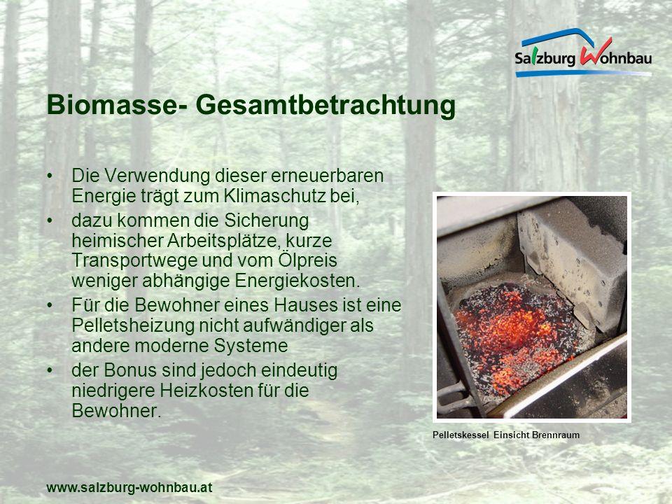 Biomasse- Gesamtbetrachtung