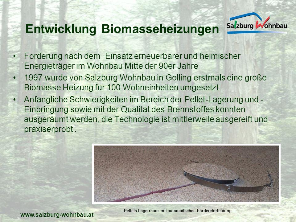 Entwicklung Biomasseheizungen