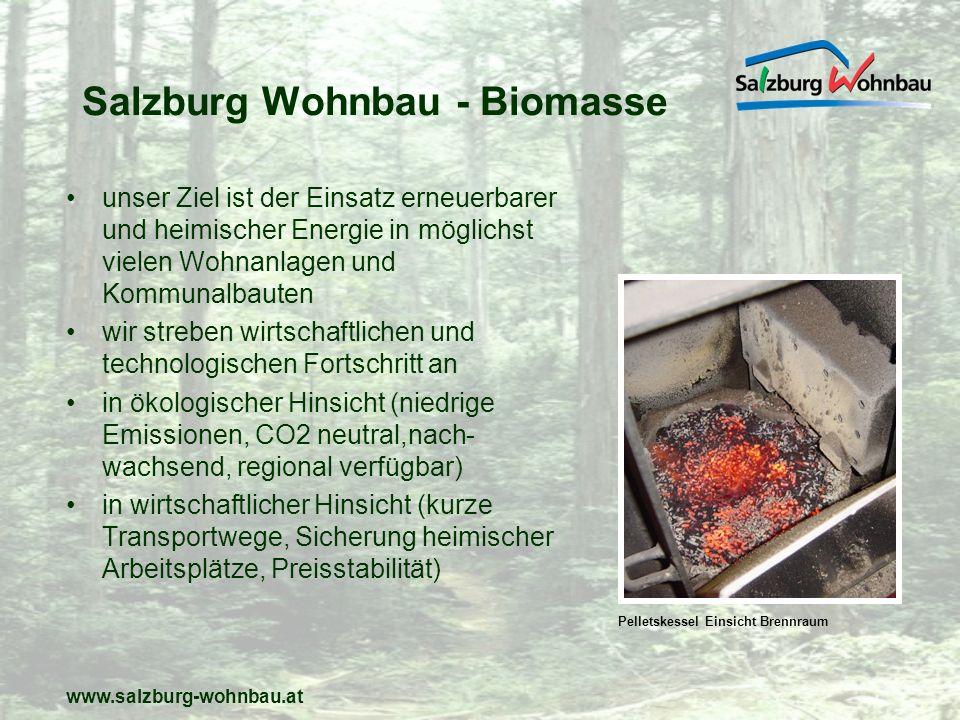 Salzburg Wohnbau - Biomasse