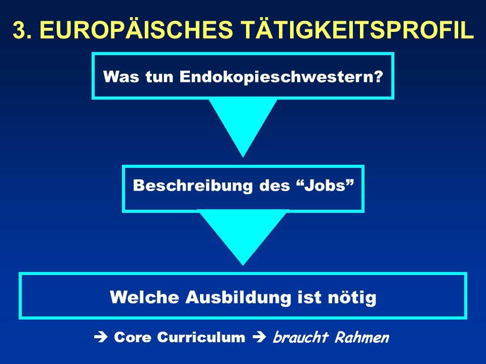 3. EUROPÄISCHES TÄTIGKEITSPROFIL