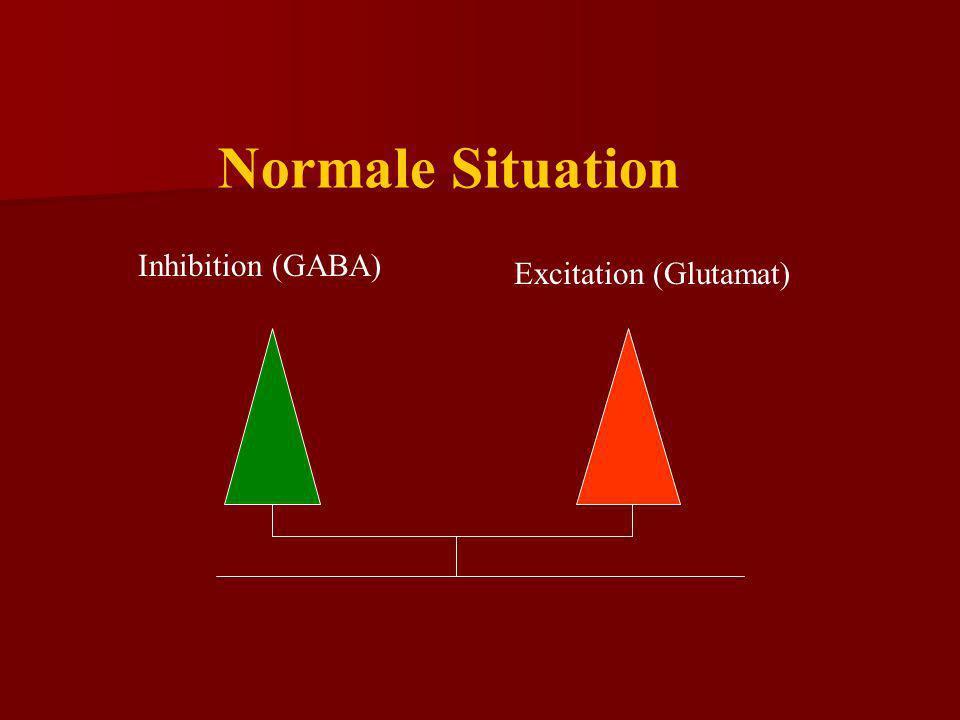 Normale Situation Inhibition (GABA) Excitation (Glutamat)