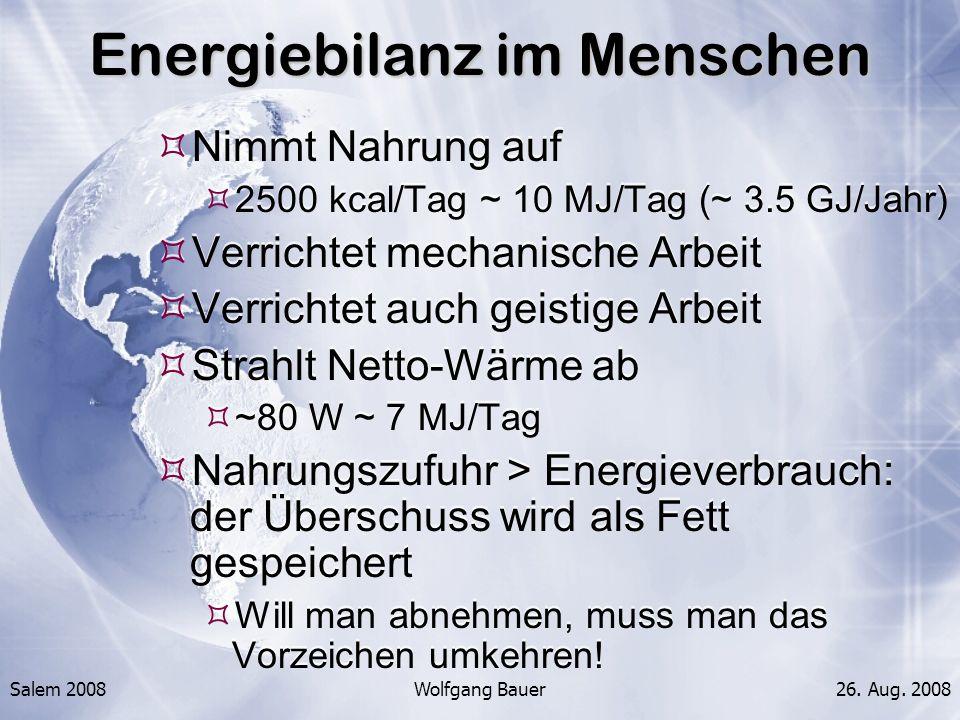 Energiebilanz im Menschen