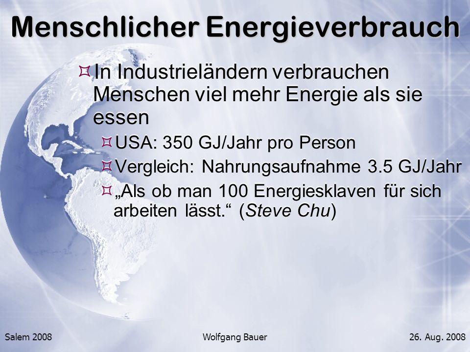 Menschlicher Energieverbrauch