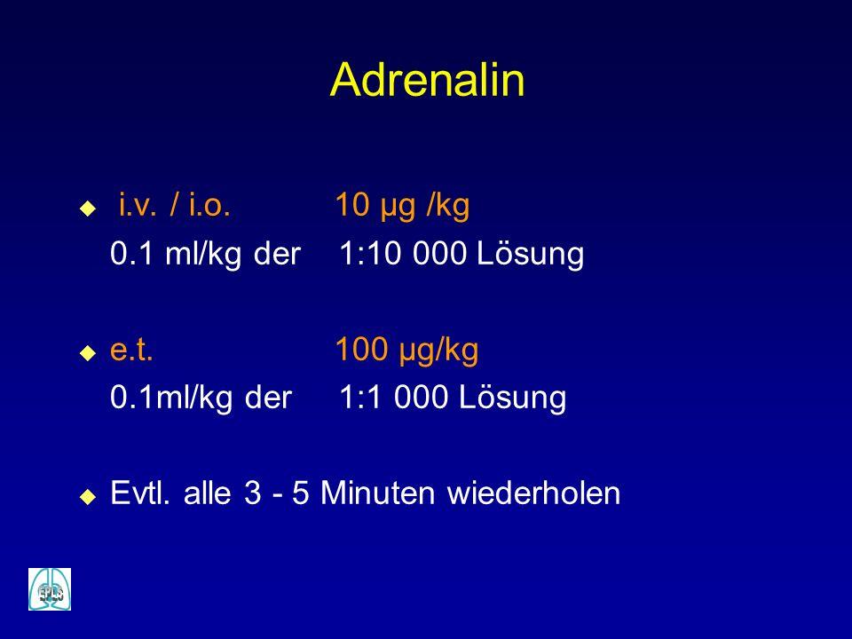 Adrenalin i.v. / i.o. 10 µg /kg 0.1 ml/kg der 1:10 000 Lösung