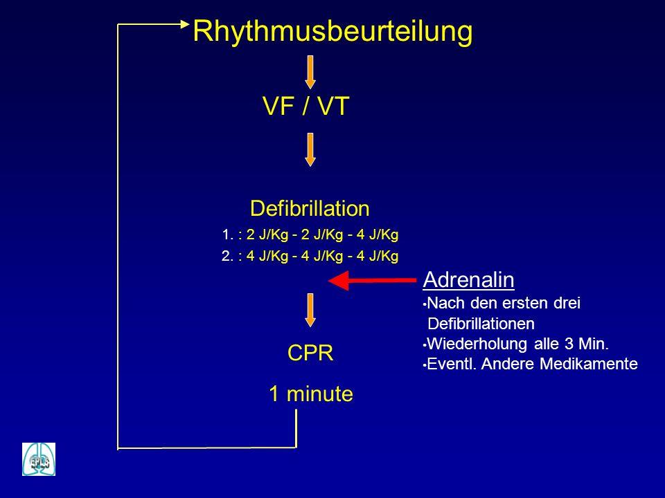 Rhythmusbeurteilung VF / VT Defibrillation Adrenalin CPR 1 minute