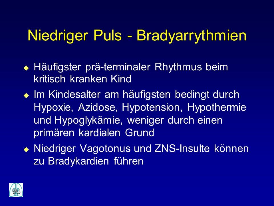Niedriger Puls - Bradyarrythmien