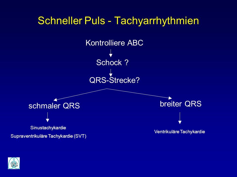 Schneller Puls - Tachyarrhythmien