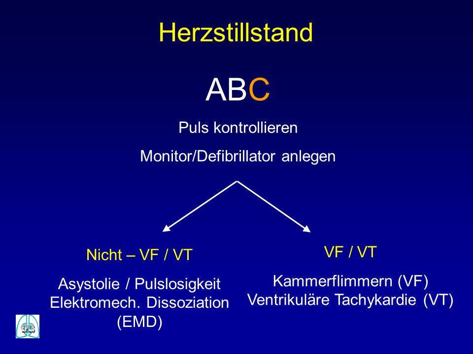 ABC Herzstillstand Puls kontrollieren Monitor/Defibrillator anlegen