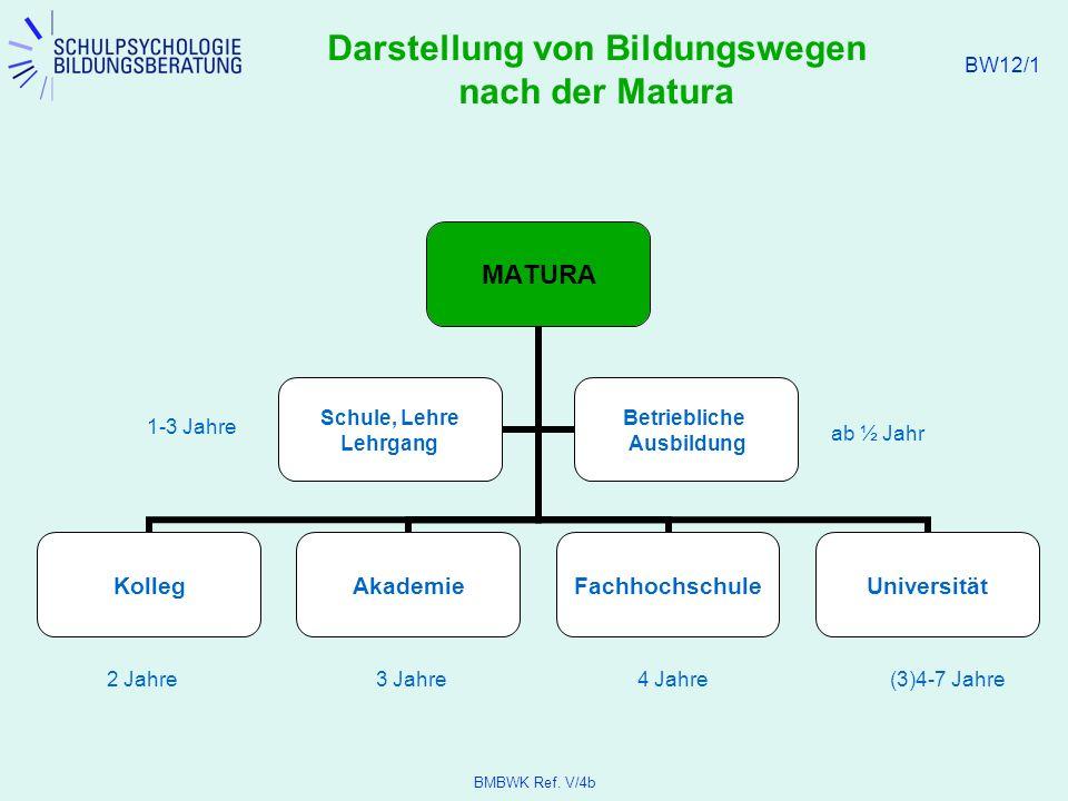 Darstellung von Bildungswegen nach der Matura - ppt video online ...