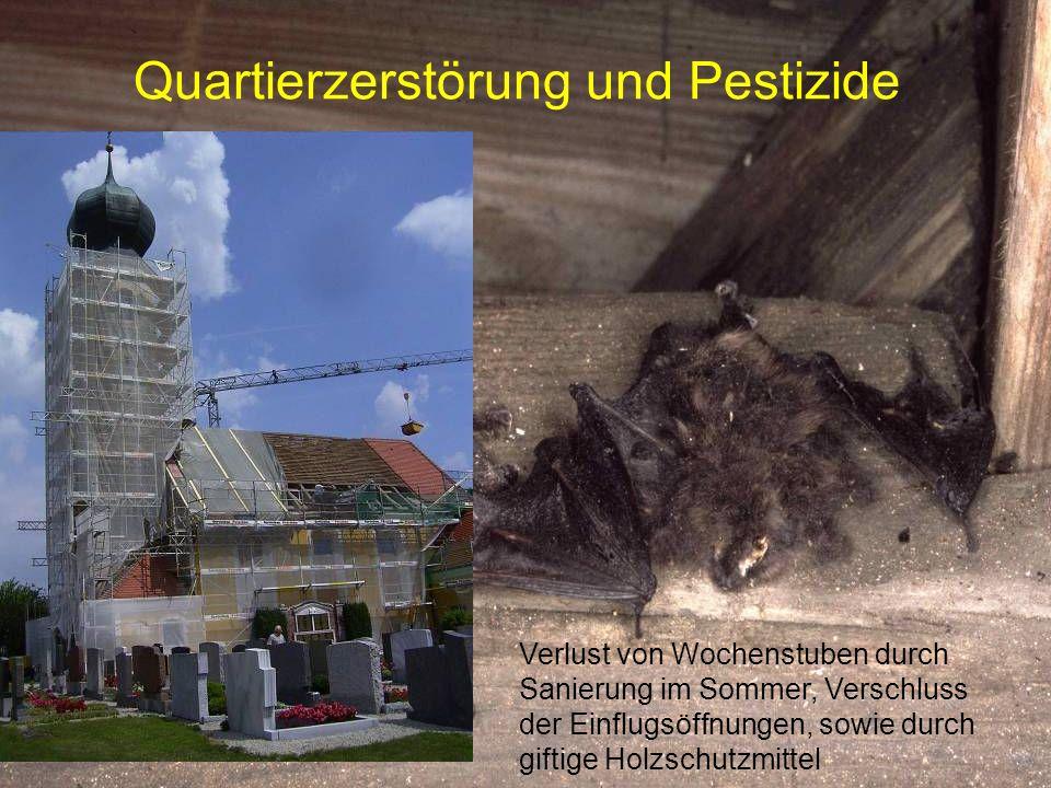 Quartierzerstörung und Pestizide