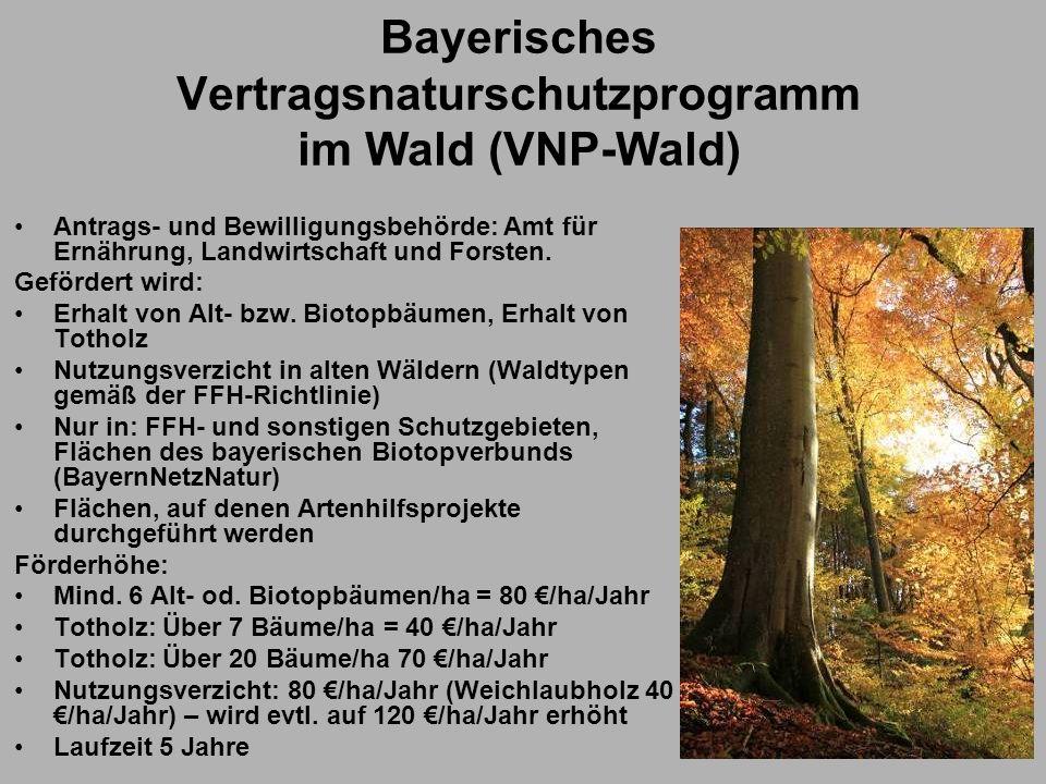 Bayerisches Vertragsnaturschutzprogramm im Wald (VNP-Wald)