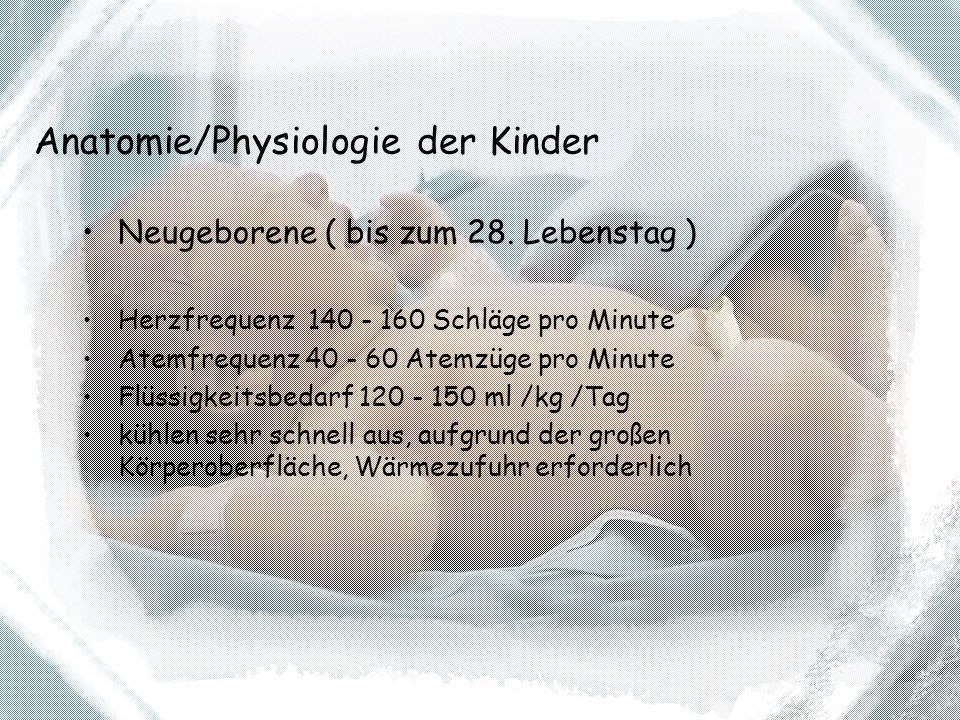 Anatomie/Physiologie der Kinder