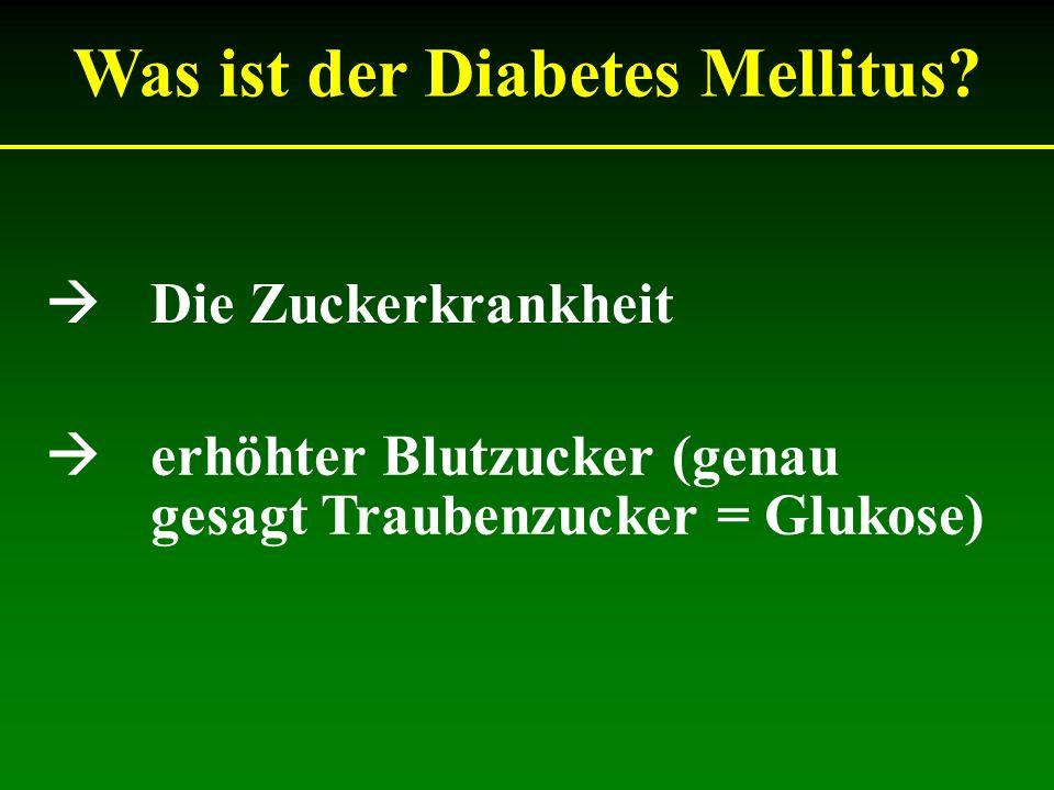 Was ist der Diabetes Mellitus