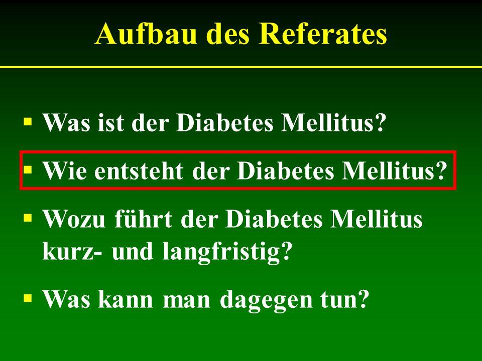 Aufbau des Referates Was ist der Diabetes Mellitus