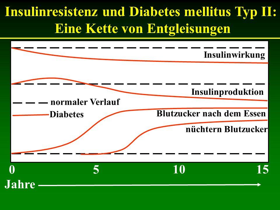 Insulinresistenz und Diabetes mellitus Typ II: