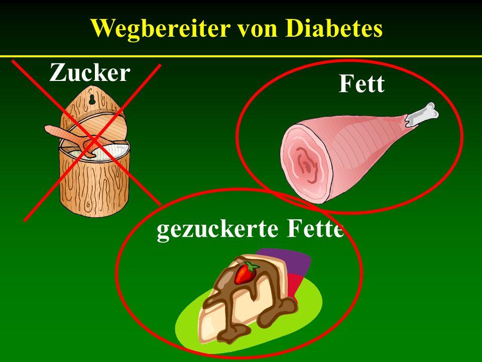 Wegbereiter von Diabetes
