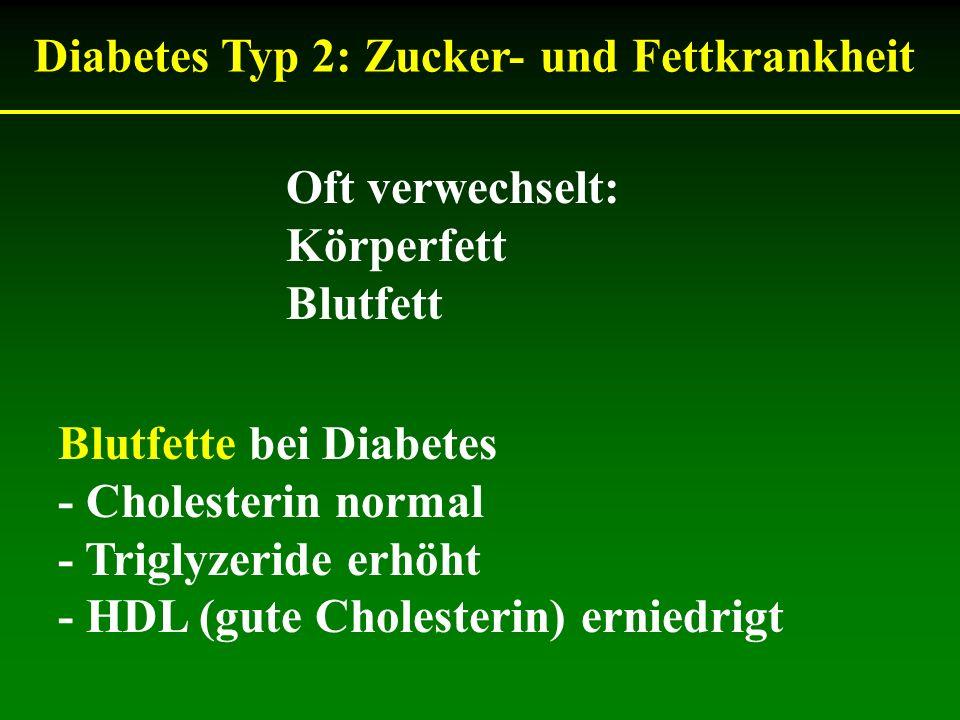 Diabetes Typ 2: Zucker- und Fettkrankheit