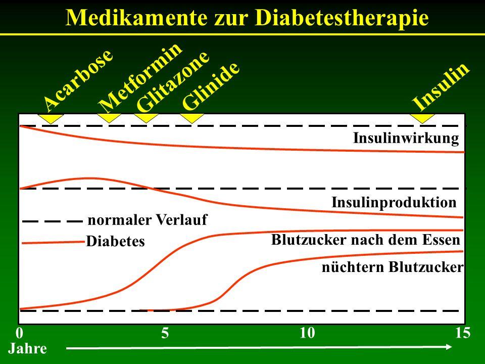 Medikamente zur Diabetestherapie