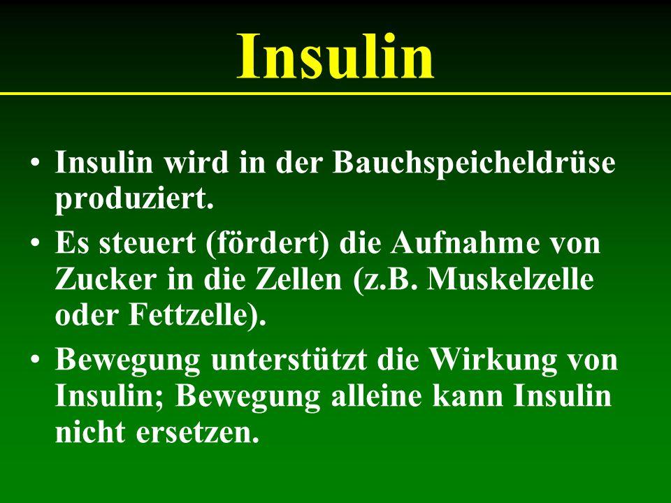 Insulin Insulin wird in der Bauchspeicheldrüse produziert.